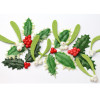 Katy Sue Designs Silikonform Holly & Mistletoe