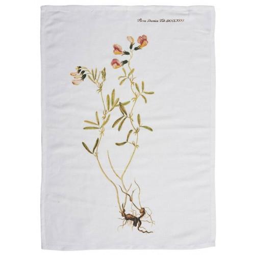 Södahl Handduk, 50 x 70 cm, Ärtblomst