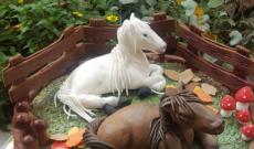Hästtårtor - Tårtor med hästar